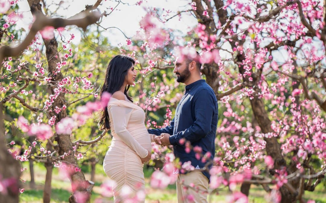 Affordable Perth Maternity Photography | Pink Blossom season